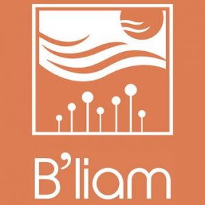 Hotel B'liam